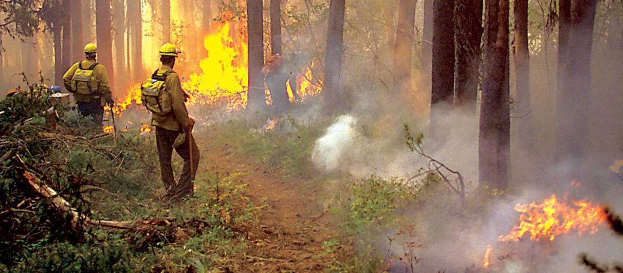 A Taxpayer's Guide To Wildfires: Executive Summary