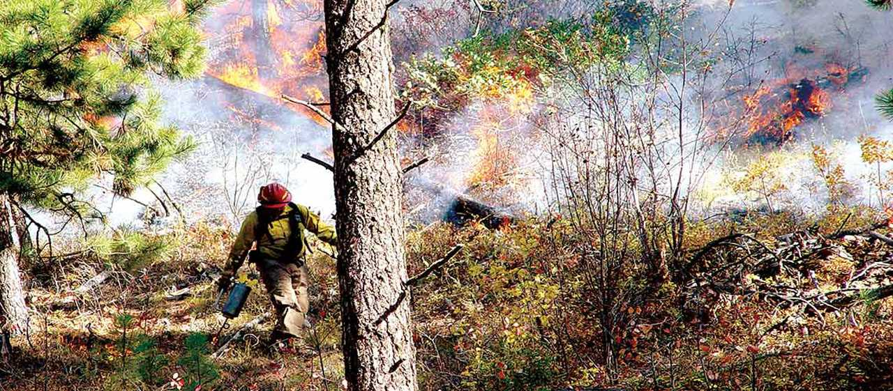 A Taxpayer's Guide To Wildfires: Part 2