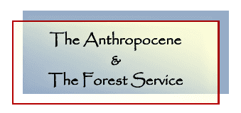 A Forest Service Vision During the Anthropocene