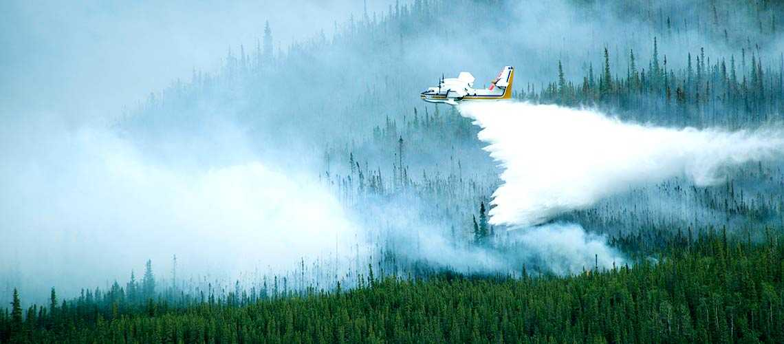 A Taxpayer's Guide To Wildfires: Part 4