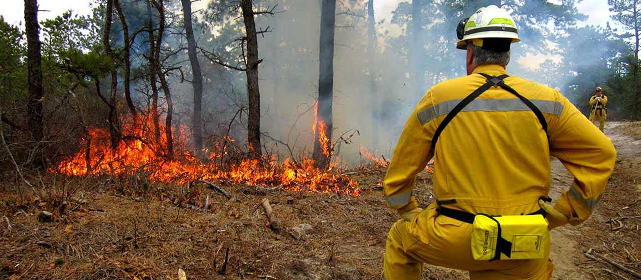 A Taxpayer's Guide To Wildfires: Part 5