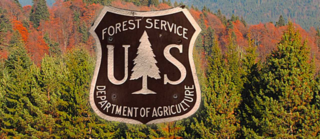Bruce Courtright: The U.S. Forest Service...Headed For Extinction Or Revitalization?
