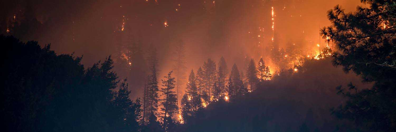 Bob Roper on Wildfires and What to do Next